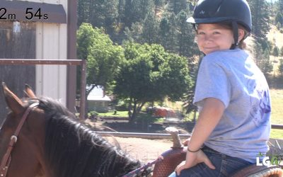 HORSE THERAPY AND SOLAR ECLIPSE – Weekly Newsish Roundup